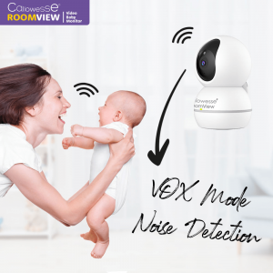 Callowesse RoomView Voice Detection