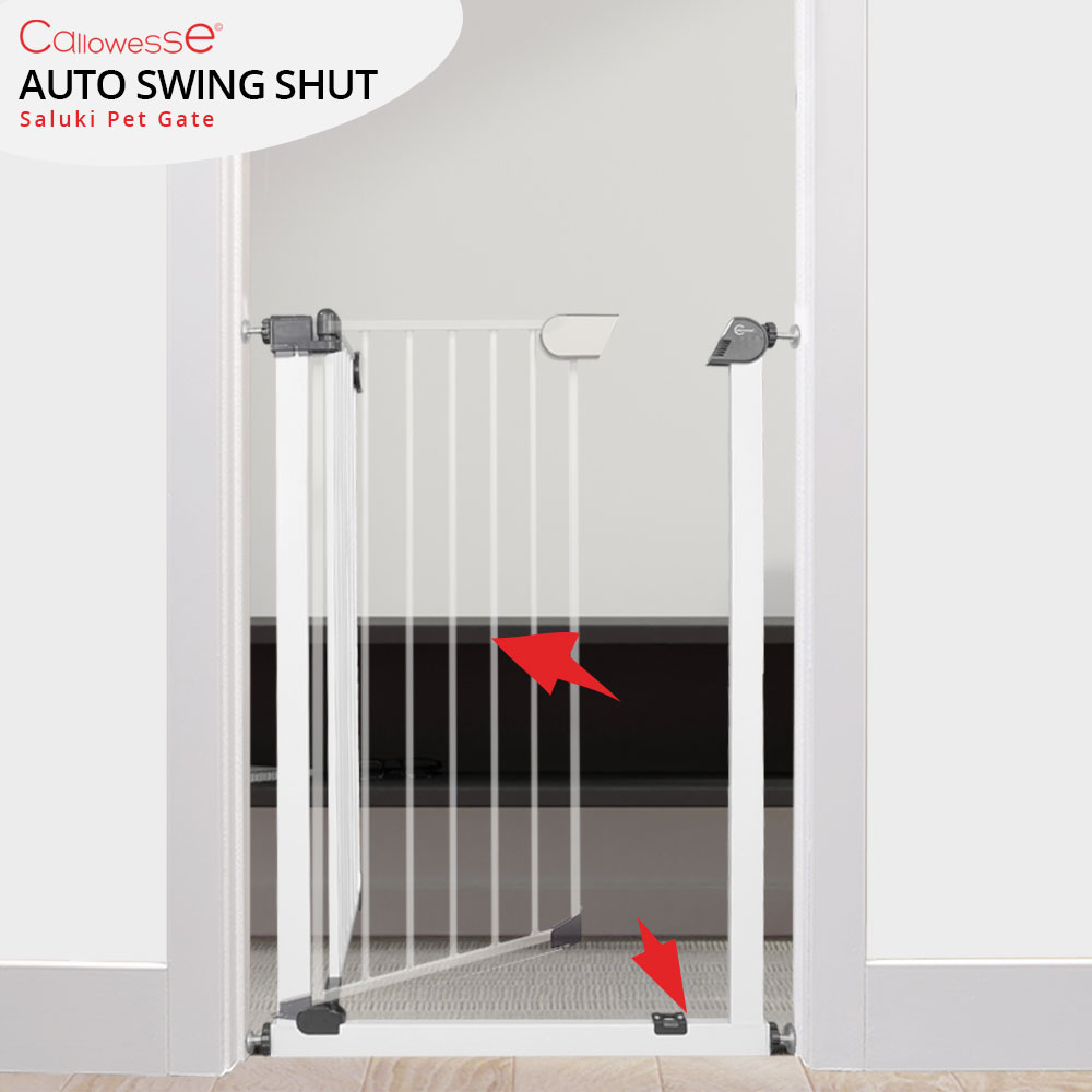 Saluki Gate Auto Shut