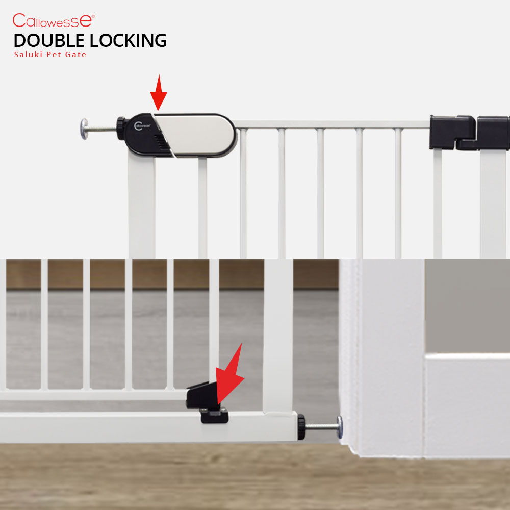 Saluki Gate Double Locking