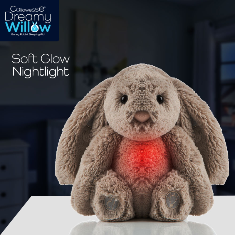 Dreamy Willow Nightlight